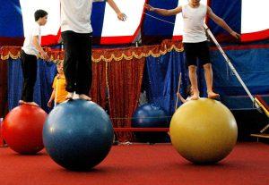 Cirque @ MJC de Reignier-Esery