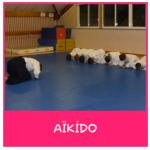 activité aikido enfant