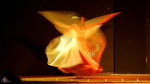 Stage de Danse Orientale @ MJC de Reignier-Esery